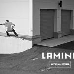 Lamina_banner